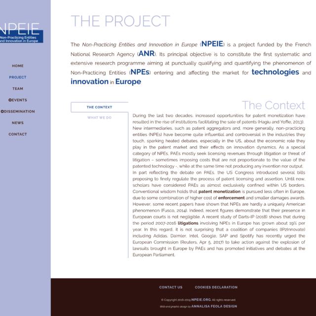 page project du site web NPEIE