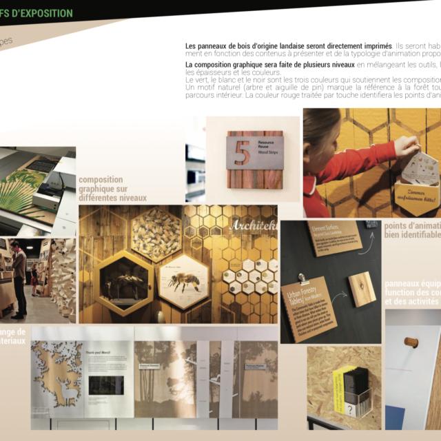 Planche dispositifs d'exposition musée Graine de Forêt