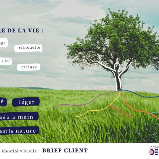 Auriaveda brief client